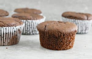 wheat chocolate avocado muffins