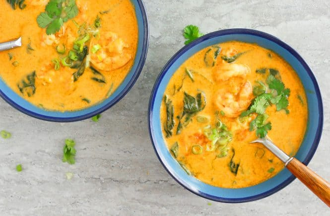 instant pot thai curry soup