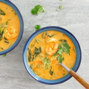 instant pot thai curry soup